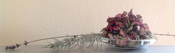 Herbstgruß: Hortensie und Lavendelzweig